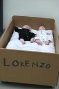 cardboard crib