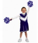 Aeromax Cheerleader Costume