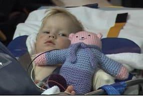 Australian Toddler Survives Lethal Snake Bite