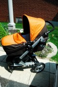 Peg Perego Skate reverse facing bassinet
