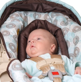 Parents Urged To Keep Infant Car Seats in The Car