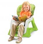 Fisher Price EZ Bundle - Toddler Seat