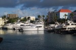 Yachts in the habour