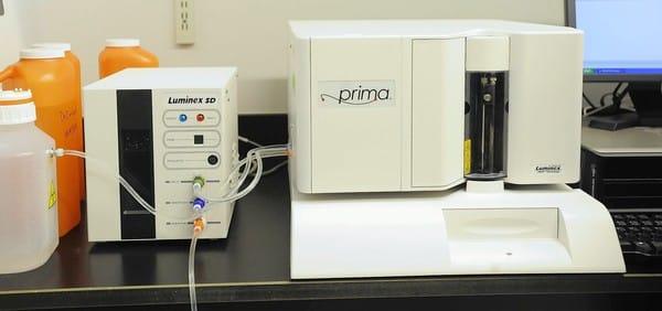 Luminex Respiratory Viral Panel