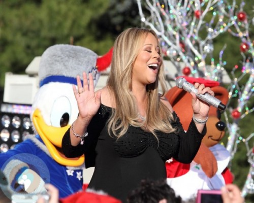 walt disney world castle christmas. at Walt Disney World.