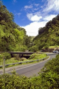 Maui - road to hana