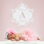 Pink N Blue Baby - Elegant script Custom name & Ornate frame wall decal - girl