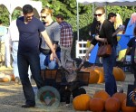 Amy Adams and Darren LeGallo with their daughter Aviana at Mr Bones Pumpkin Patch