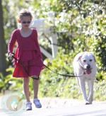 Violet Affleck walking the family's dog