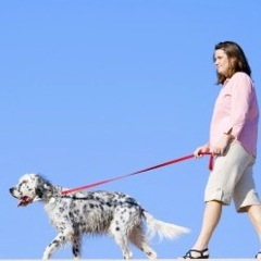 Fido Can Help Pregnant Women Hit Their Exercise Targets