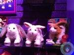 FurReal friends hop n cuddles bunnies 2012