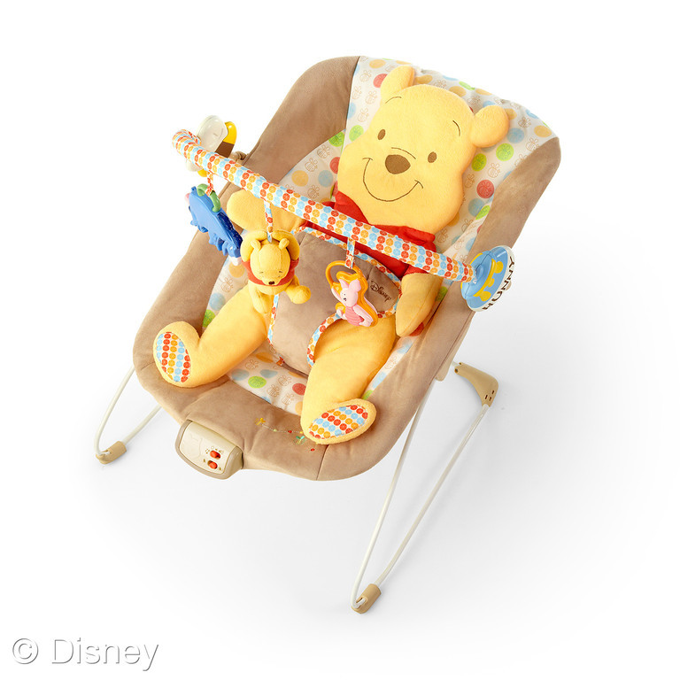 Disney Baby Winnie the Pooh bouncer Growing Your Baby