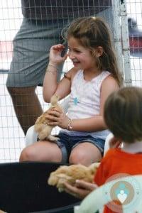Francesca Bateman visits the petting Zoo at the farmer's market
