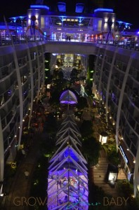 Allure of the Seas - Central Park at night