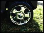 Joovy 4x4 wheels