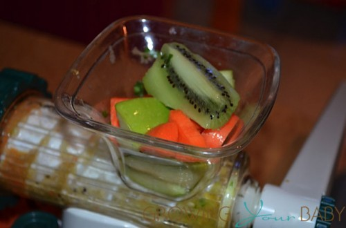 Lexan Healthy Juicer - fruits in the hopper