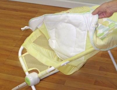 Image of recalled Rock 'N Play Infant Sleeper
