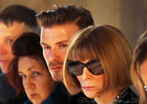 David Beckham and Anna Wintour attend Victoria Beckham's Fall 2013 fashion show during New York Fashion Week