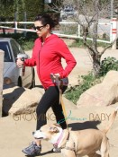Jenna Dewan's Dogs Join Her For a Pregnancy Hike