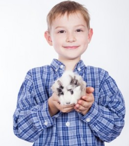 boy with guinea pig