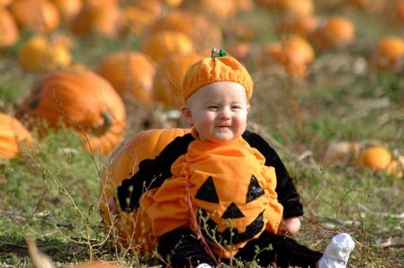 Ella Pumpkin Feldes 1