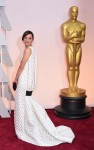 Marion Cotillard - 87th Annual Academy Awards in Los Angeles