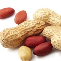 Study: Eating Peanuts during Infancy May Protect Against Allergy