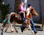 Seraphina Affleck enjoys a pony ride at the farmer's market
