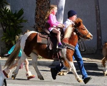 Seraphina Affleck enjoys a pony ride at the farmer's market
