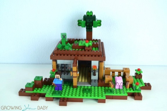 LEGO Minecraft The First Night  - closed