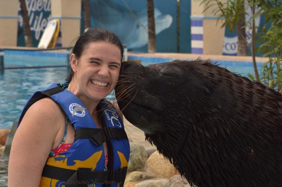 Sea Lion Experience Aquaventuras Park in Puerto Vallarta - They will kiss you