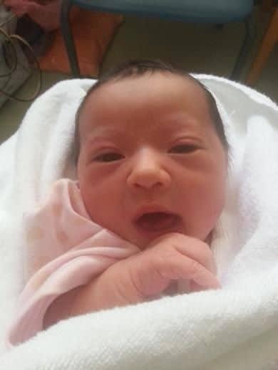 Baby Chloe Branch