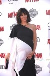 A Very pregnant Evangeline Lilly at Antman Premiere
