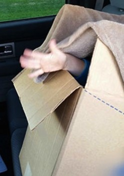 RCMP Pulls Dad Over For Speeding; Finds Boy Hiding In A Box!