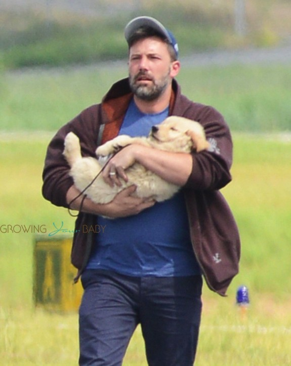 Ben Affleck carries a new puppy in Atlanta