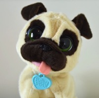 A Cuddly Companion! ~ JJ, My Jumpin' Pug Pet {Video Review}