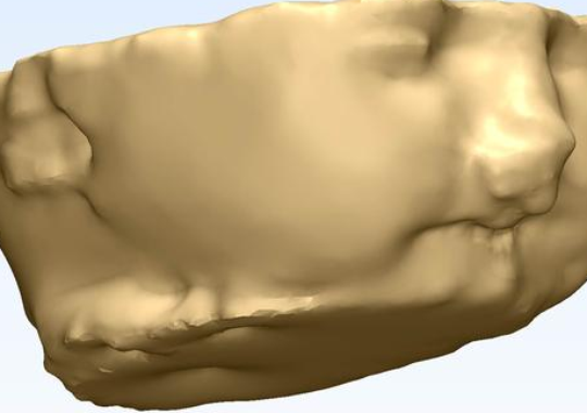 The 3D model that helped doctors predict Conan's condition. (Photo WMAZ Screenshot)
