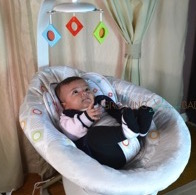 Fisher-Price's Soothing Motions Seat  t