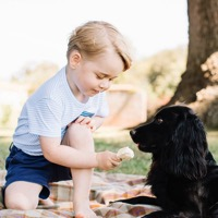 Palace Releases New Images of Prince George On His 3rd Birthday!