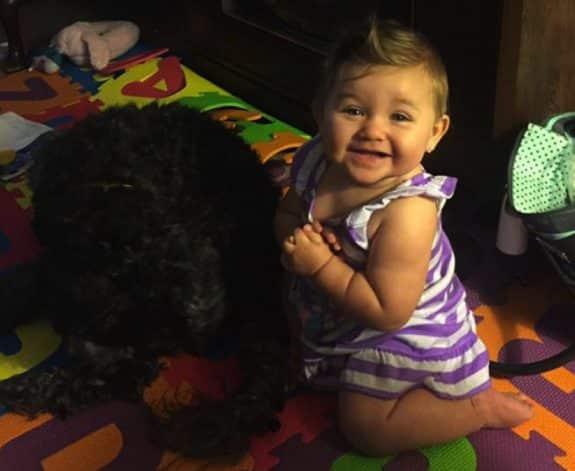 Dog Saves Baby House Fire - polo and viv
