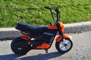 Kids Can Whip Around On The Mongoose MGX-250!  {VIDEO REVIEW}