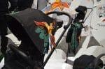 new-cybex-birds-of-paradise-stroller