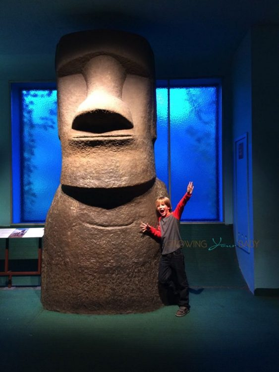 American Museum Of Natural History - Easter Island Statue