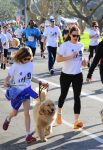 Jennifer Garner at a marathon with their dog in LA