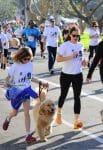 Jennifer Garner at a marathon with their dog in LA