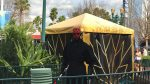 Star Wars At Hollywood Studios - Darth Maul