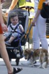 Anne Hathaway and her son Jonathan take their pooch for a stroll in NYC