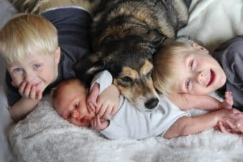 Dogs-May-Protect-Against-Childhood-Eczema-and-asthma