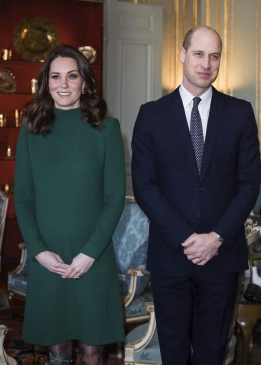 Prince William and Kate Middleton visit Vasaparken