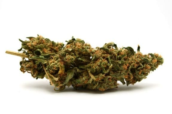 AAP - Pregnant Women Using Marijuana Increasing